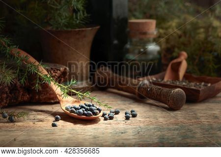 Juniper Berries On A Old Wooden Table. In The Background Branches Of Juniper, Antique Bottle And Bra