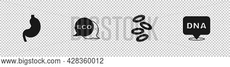 Set Human Stomach, Label For Eco Healthy Food, Hemoglobin And Dna Symbol Icon. Vector