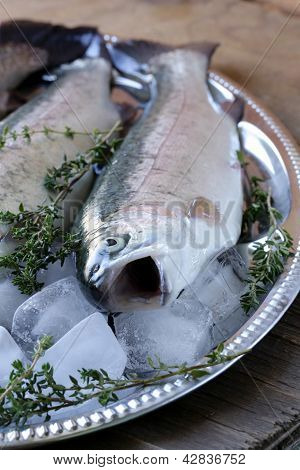 fresh raw fish trout on ice with lemon and thyme
