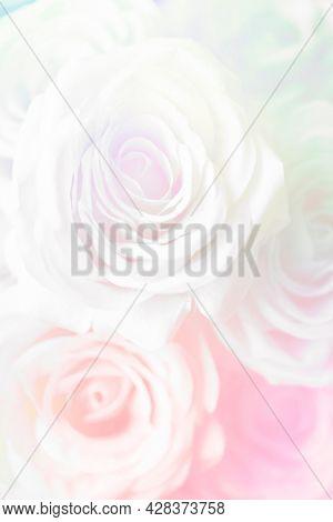 Pink rose patterned background wallpaper