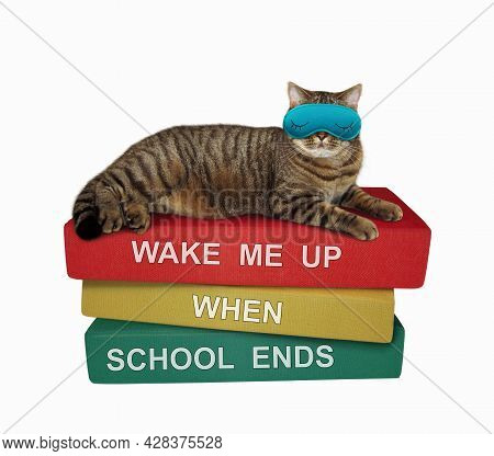 A Beige Cat In A Sleep Mask Is Sleeping A Pile Of Books. Wake Me Up When School Ends. White Backgrou
