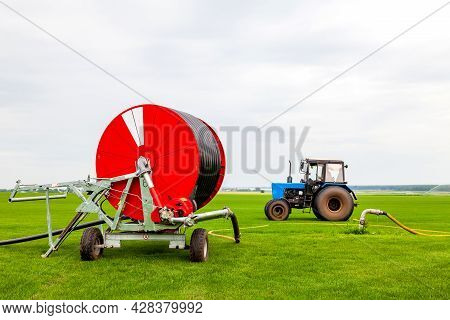 Watering A Vegetable Green Field With A Big Water Hose On The Red Bobbin And Blue Tractor In Summer.