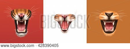 Realistic Design Concept With Open Mouth Of Angry Roaring Cat Family Animals Isolated Vector Illustr