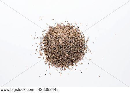 Bitter Cumin (cuminum Cyminum) Flatlay