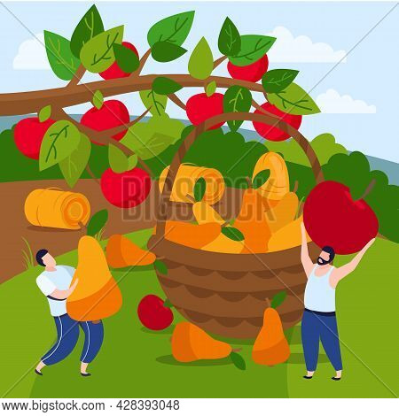 Harvesting Flat Composition With Outdoor Rural Scenery And People Gathering Apples And Pears Into Wo