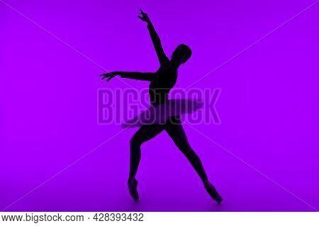 Professional Ballet Dancer On Purple Studio Wall With Violet Light. Sensual Ballerina Dancing. Beaut