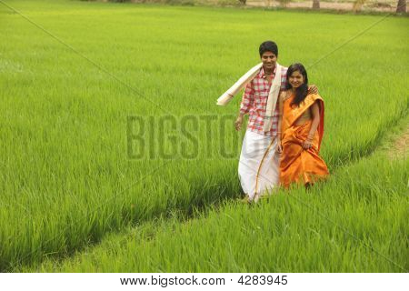 asian young couple standing in a paddy field poster