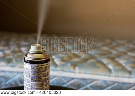 Selective Focus On Insect Insecticide Aerosol Can Fogger Used To Kill Bed Bugs, Spiders, Mites, Flie