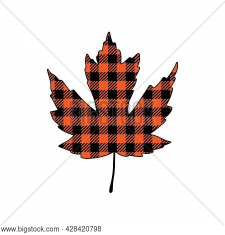 Vector Illustration Of Autumn Maple Leaf With Buffalo Plaid Pattern Isolated On White Background. Fa