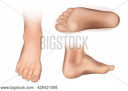 Collection Of Bare Human Man And Woman Feet Arranged In Different Poses Isolated On White Background