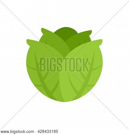 Diet Cabbage Icon. Flat Illustration Of Diet Cabbage Vector Icon Isolated On White Background