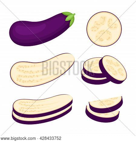 Eggplant, Whole Vegetable, Half And Slices, Vector Illustration
