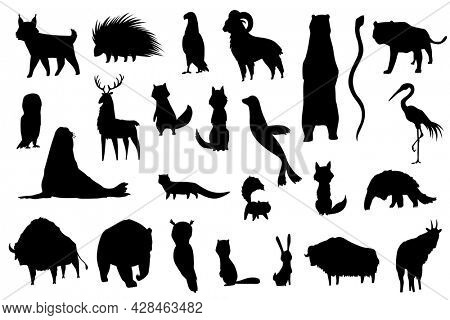 Silhouette animals of north america. Nature fauna collection. Geographical local fauna. Mammals living on continent.  illustration