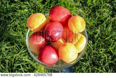 Ripe Nectarines And Apricots Lie In A Glass Vase On A Background Of Green Grass. Selective Focus.