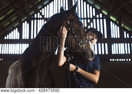 Female Horse Owner Embracing Her Seal Brown Horse In The Stable. Expressing Her Love For The Pet Hor