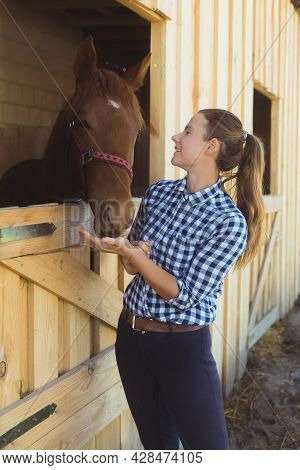 Female Horse Owner Standing At The Horse Stable Embracing A Dark Bay Horse In The Stall. The Horse I