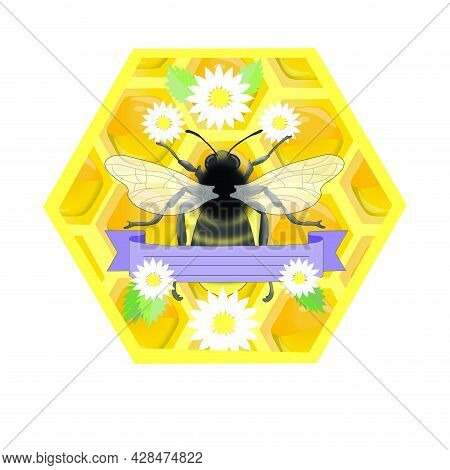 Agriculture, Animal, Bee, Beehive, Beetle, Bumblebee, Busy, Buzz, Cell, Chamomile, Composition, Dais