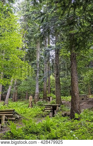 Military Bunkers In The Forest, Dukla Battlefield, Slovak Republic. Travel Destination.