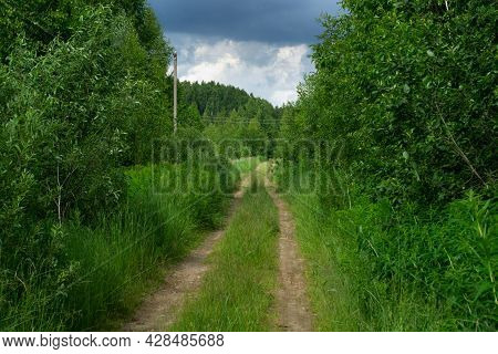 Dirt Road Between Trees At Countryside In Summer Day