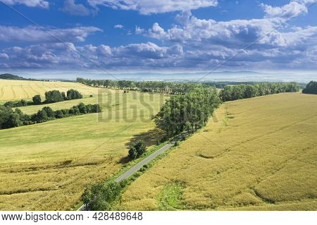 Highlands, Farmlands, Meadows And Clumps Of Trees Photographed From High Altitude With A Drone.\\nsu