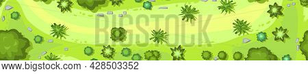 Jungle Forest Top View. Horizontal Seamless Composition. Overgrown Rainforest. Glade. Cartoon Style
