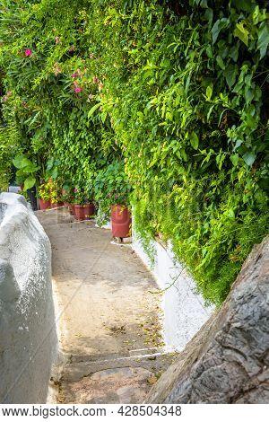 Narrow Street In Anafiotika, Plaka District, Athens, Greece. Plaka Is Tourist Attraction Of Athens.