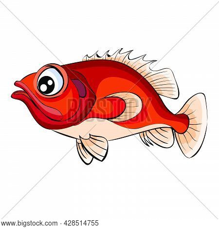 Red Sea Bass, Cartoon Illustration, Isolated Object On White Background, Vector, Eps