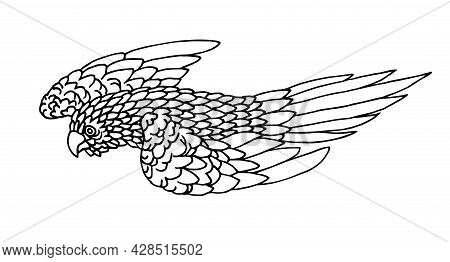 Flying Parrot, Tropical Bird, For Decorative Ornaments, Vector Illustration With Black Ink Contour L