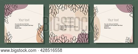 Illustration Botanical Set Of Square Templates For Postcards, Cards, Text Placement. Minimalistic Mo