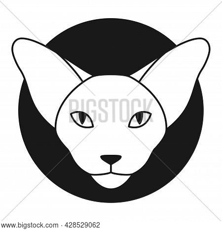 Oriental Cat Logo Or Icon. Oriental Shorthair Or Sphynx Cat Head In Outline Style. Front View. Vecto