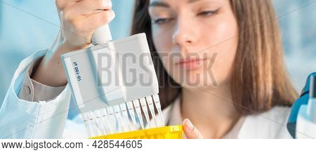 Microbiological laboratory scientist woman with multi channel pipette going DNA test
