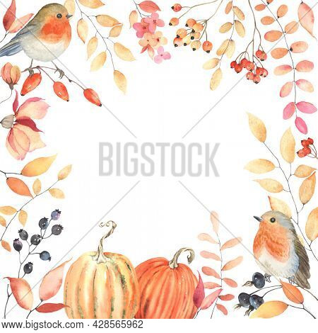 Autumn frame with birds Robin, pumpkins, berries, flowers and branches with colorful leaves. Watercolor illustration isolated on white background for invitation or greeting card, for thanksgiving day.
