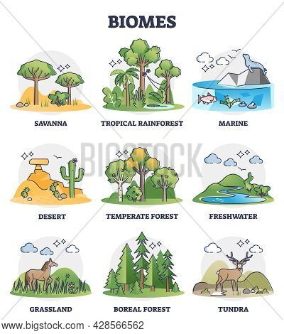 Biomes As Biogeographical Climate Zones Division In Outline Collection Set. Different Weather Enviro