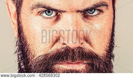 Sexy Closeup Portrait Of Brutal Handsome Male, Black Beard. Portrait Of Masculinity. Sexy Look Of Ma