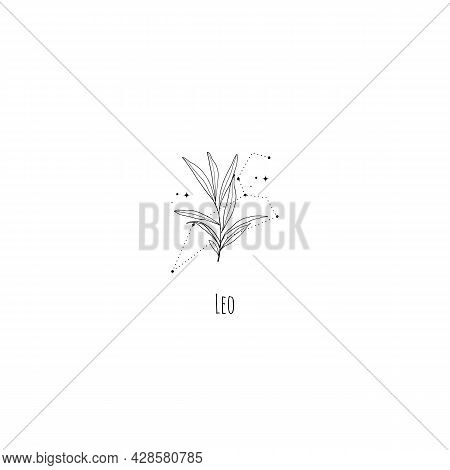 Hand Drawing Leo Constellation Symbol With Floral Branch And Stars. Modern Minimalist Mystical Astro
