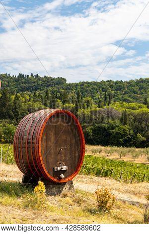 Wine barrel near Firenze, Tuscany, Italy