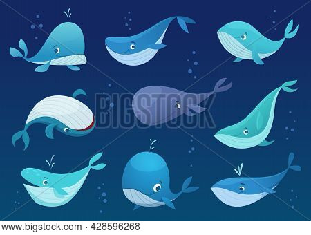 Whales Cartoon. Underwater Wild Big Cute Fishes Sea Or Ocean Swimming Animals Exact Vector Whales In