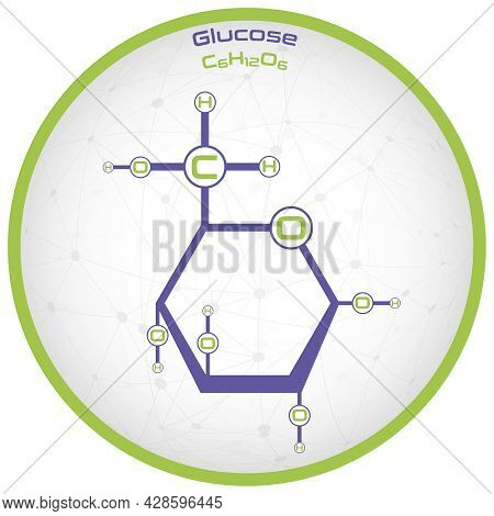 Large And Detailed Infographic Of The Molecule Of Glucose