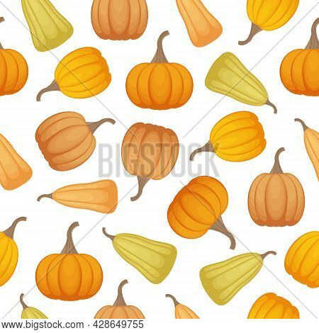 Bright Autumn Seamless Pattern With The Image Of Ripe Pumpkins Of Different Shapes And Shades. A Pat