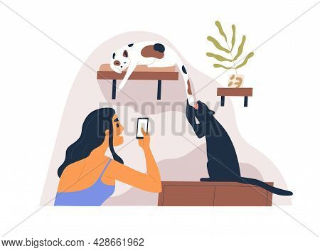 Pet Owner Taking Mobile Photo Of Her Cute Playful Cats At Home. Person Shooting With Smartphone Her