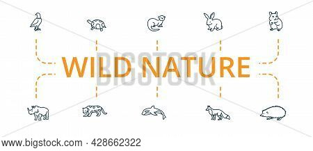 Wild Nature Icon Set. Contains Editable Icons Theme Such As Jaguar, Killer Whale, Fox And More.