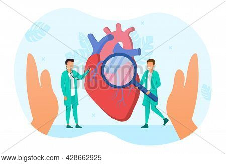 Two Male Cardiology Doctors Are Examining Human Heart With Magnifier And Stethoscope. Concept Of Hea