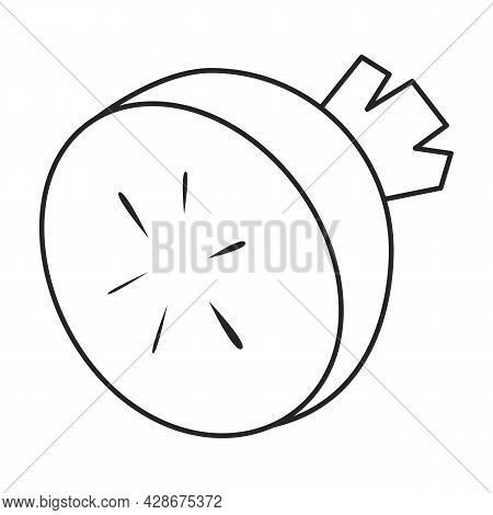 Radish Vector Icon.outline Vector Icon Isolated On White Background Radish.