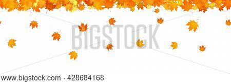 Autumn Header Overlay Of Falling Maple Leaves.