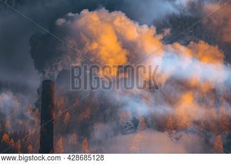 Factory smoke covering pine forest. Double exposure, global warming concept.