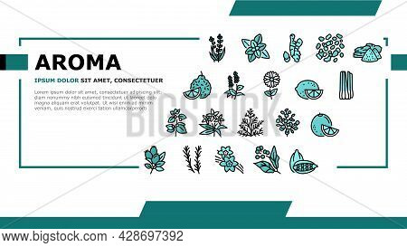 Aromatherapy Herbs Landing Web Page Header Banner Template Vector. Lavender And Peppermint, Ginger A