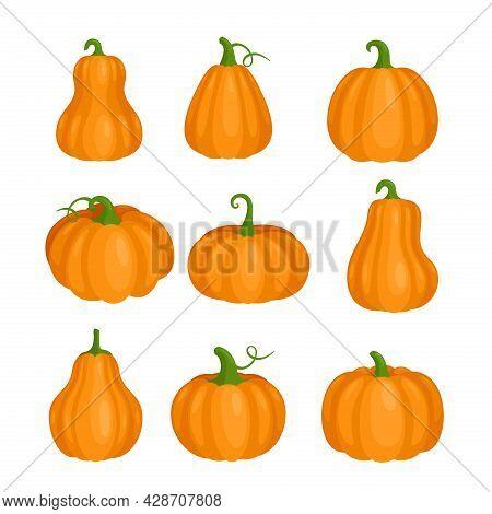 Pumpkin Set For Halloween Party, Orange Cute Pumpkin Clipart Collection, Fall Farm Squash