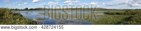 Wetland Lily Pad Marsh Swamp Water Pond Panoramic Landscape In Daneville Qc Canada
