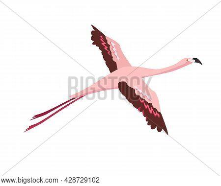 Flamingo Bird Icon. Pink Flamingo Flying On The Sky. Flat Or Cartoon Vector Illustration On Blue Bac