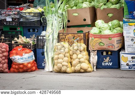 Belgrade, Serbia - May 1, 2021: Stray Cat Sneaking Among Food For Sale On A Stand Of A Pijaca A Gree